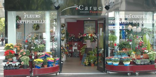 presentation-caruel